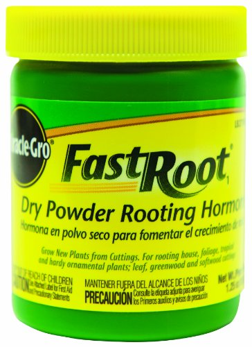 Fast Root Dry Powder Rooting Hormone, 1 1/2 oz jar